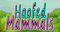 Hoofed Mammals Part 1 Video