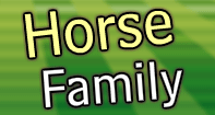 Horse Family Part 2 Video