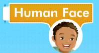Human Face Video