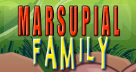 Marsupial Family Part 1 Video