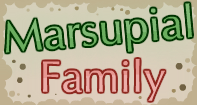Marsupial Family Part 2 Video
