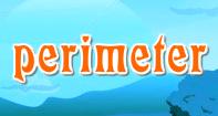 Perimeter Video