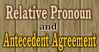 Relative Pronoun-Antecedent Agreement Video