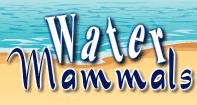 Water Mammals Video