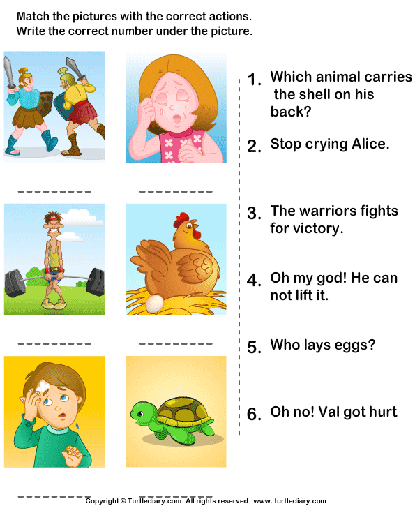 Action Verbs Worksheets 12