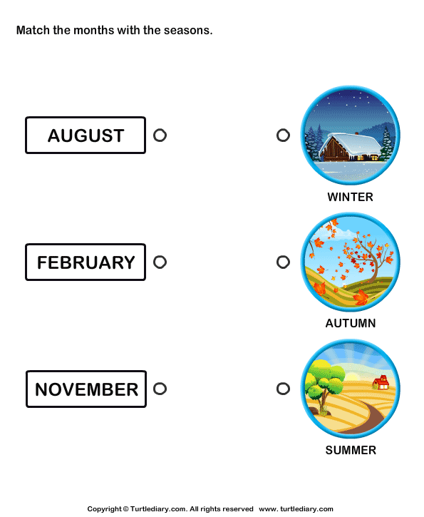 Months of the Year Worksheet10