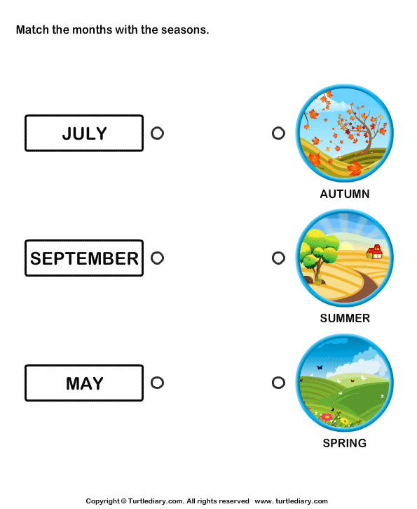 Months of the Year Worksheet4