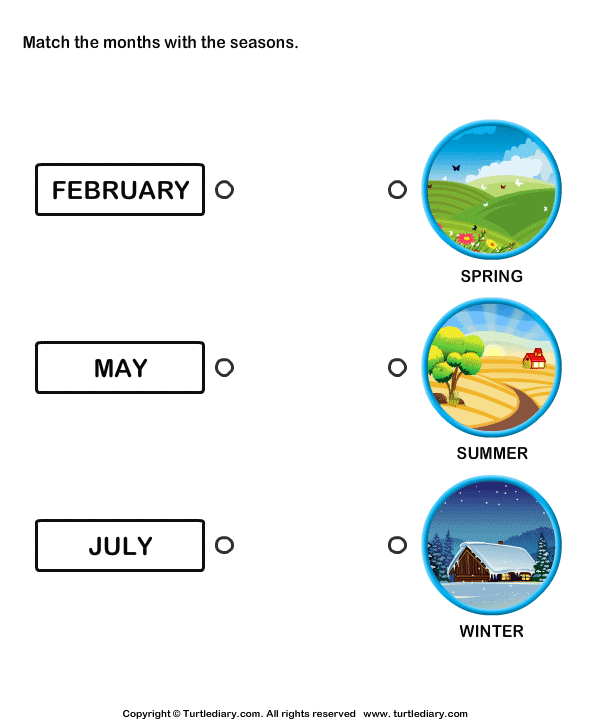 Months of the Year Worksheet7