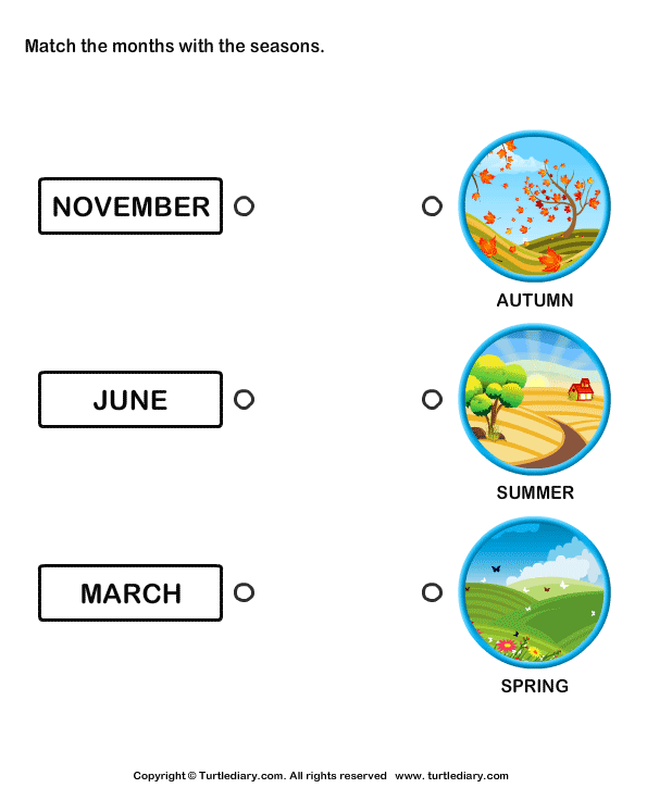 Months of the Year Worksheet9
