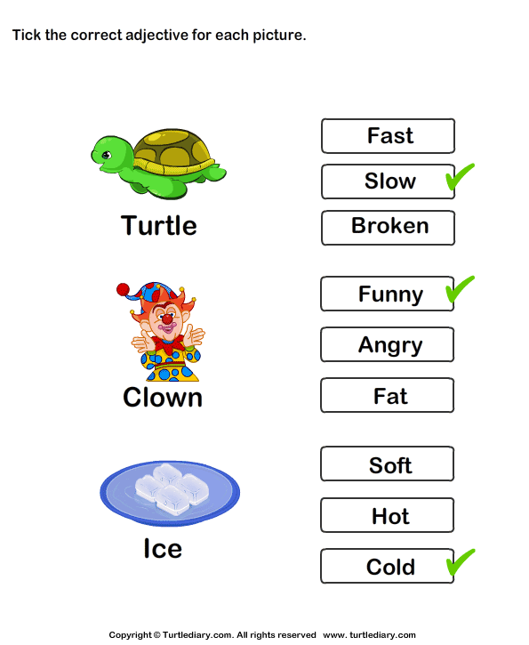 Choose the Best Adjective Answer
