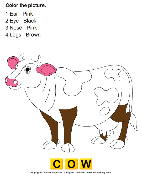 Color the Farm Animals Answer