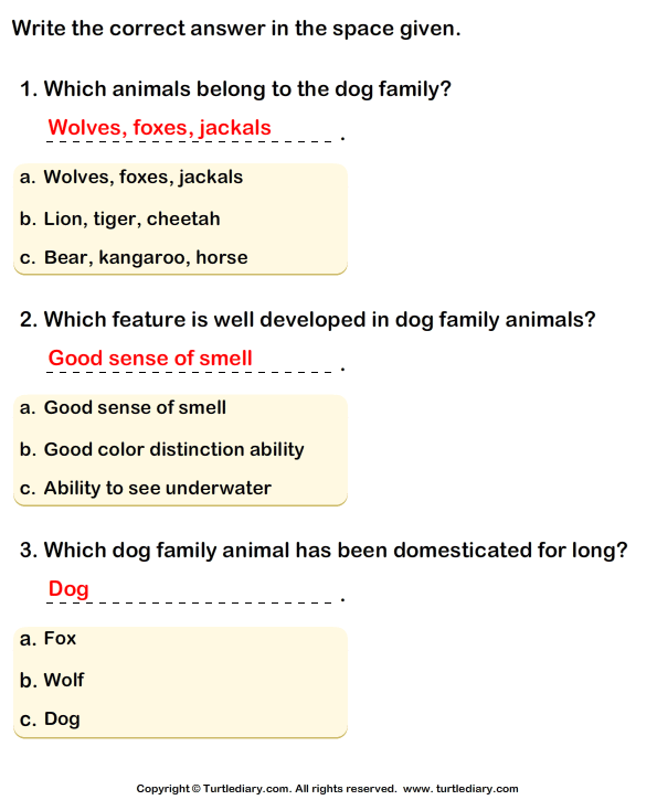 Dog Family: Write the Correct Answer Answer