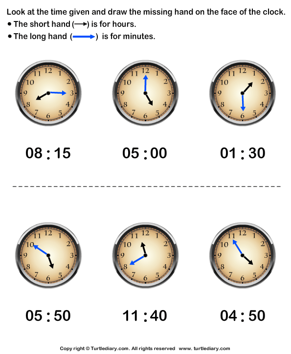 Draw Minute Hand of Clock Answer