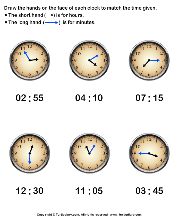 Draw Minute and Hour Hands of Clock Answer