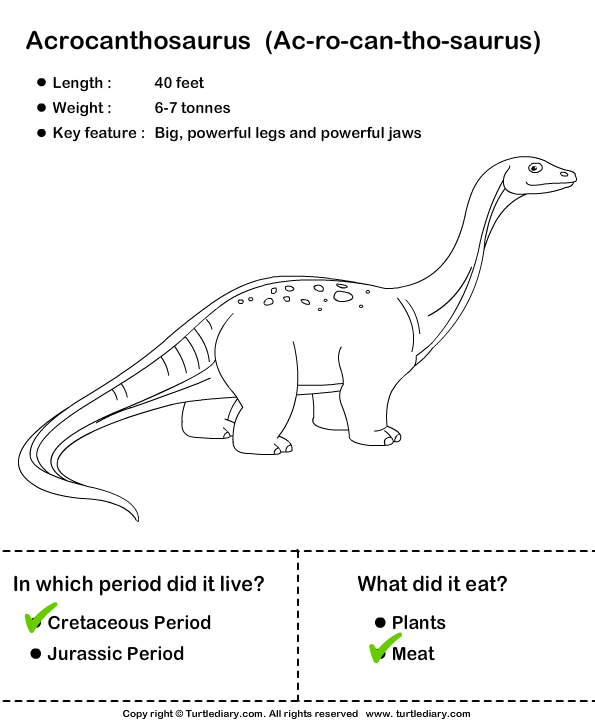 Dinosaurs - Determine the Period and Food Habits Answer