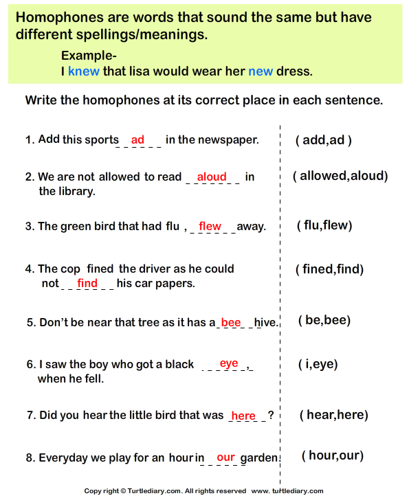 Complete the Sentences with Correct Homophone Answer