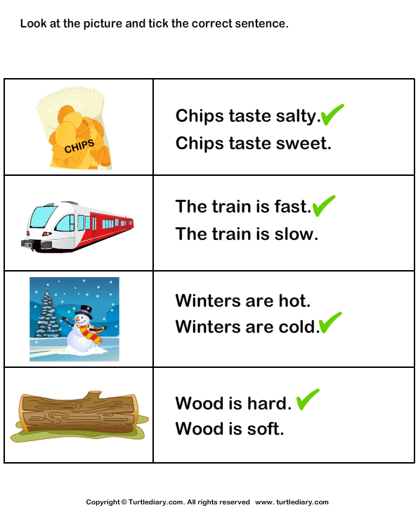 For the Picture Tick the Correct Sentence Worksheet ...