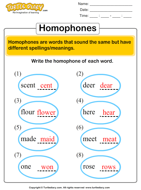 Choose the Correct Homophone Answer