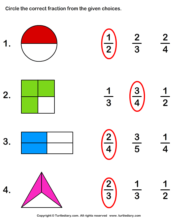 what fraction does the shape show worksheet turtle diary. Black Bedroom Furniture Sets. Home Design Ideas