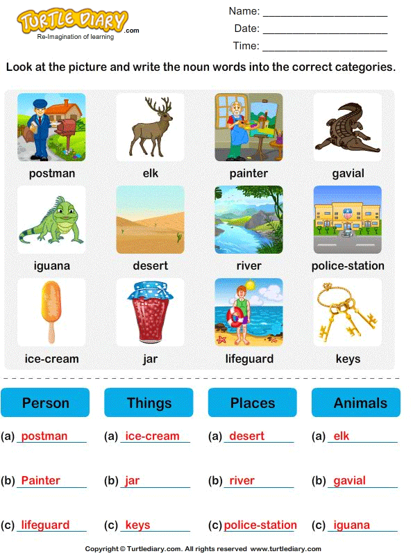 Sort Nouns as Person, Place, Animal or Thing Answer