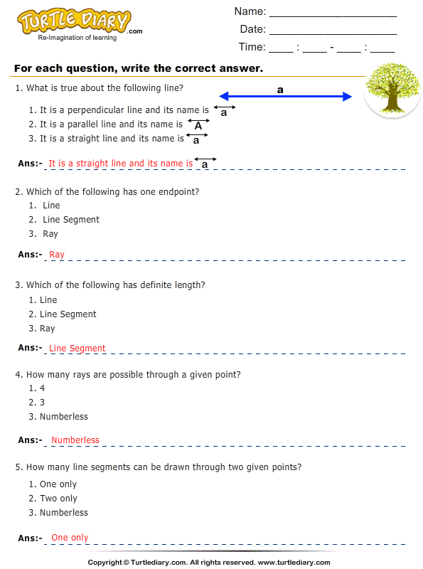 Lines, Line Segments and Rays : Multiple Choice Questions Answer