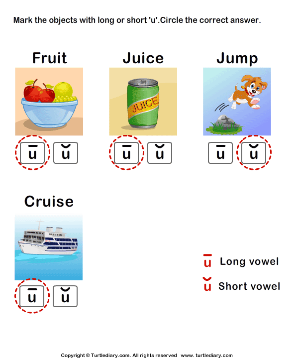 Identify the Long or Short Vowel in Words Answer