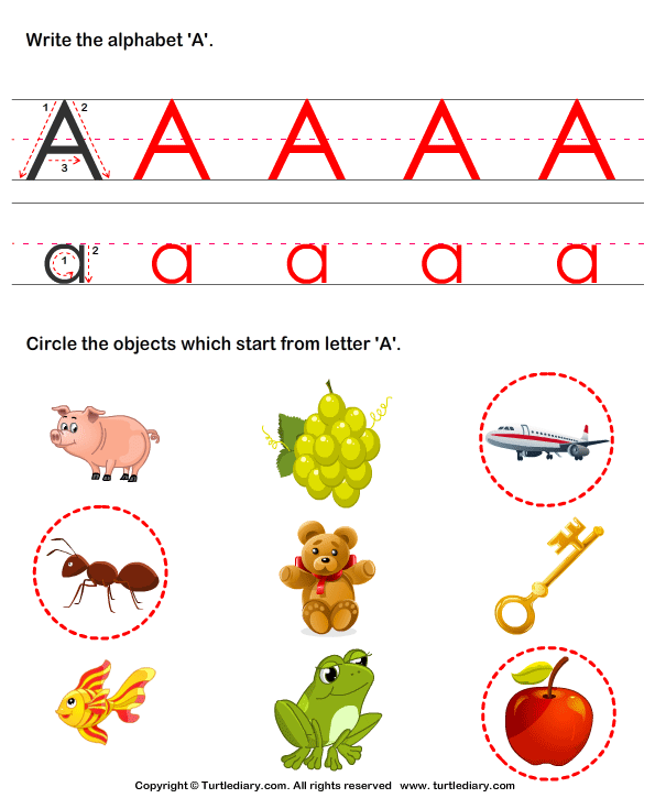 Identify Words for Letters (A-z) Answer