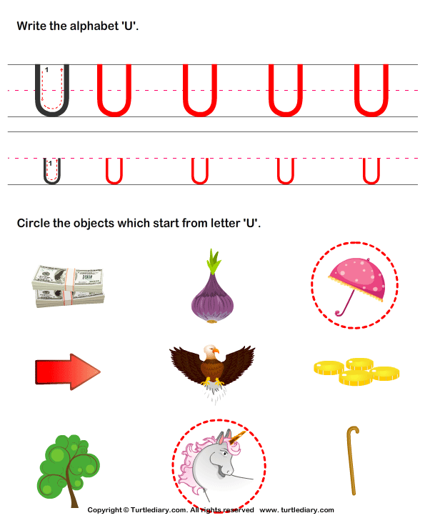 things that start with the letter u identify words that start with u worksheet turtle diary 25262 | answer identify words that start with u