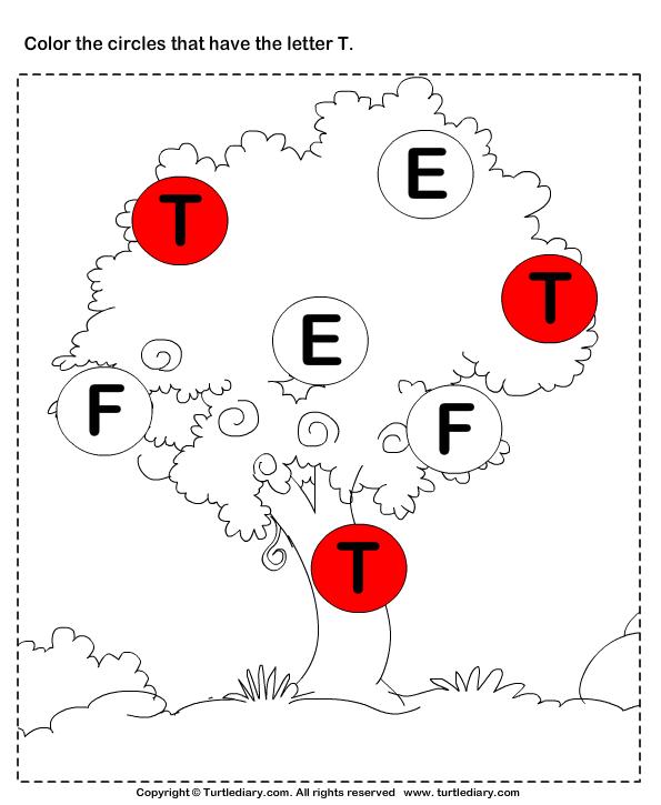 Identify Letters (a -z) Answer
