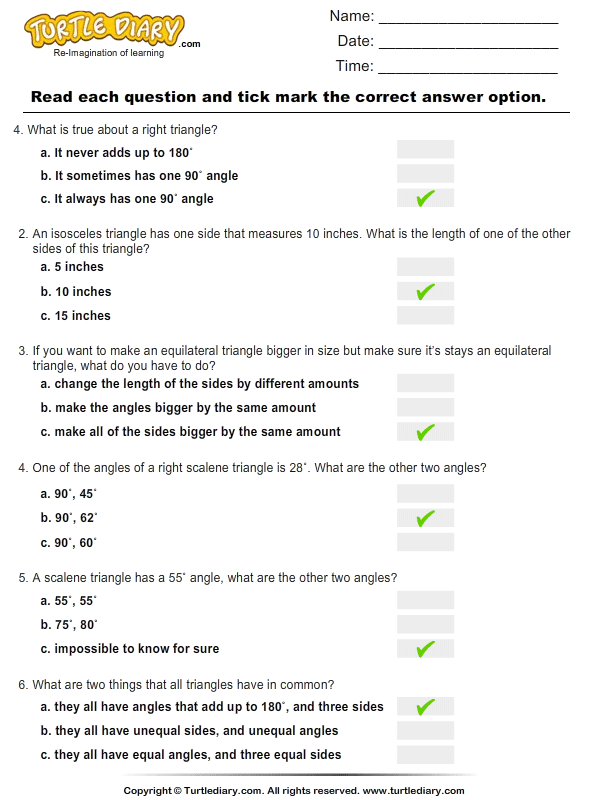 Printables First Grade Sides And Angles Worksheet identifying triangles based on sides and angles worksheet turtle multiple choice questions answer