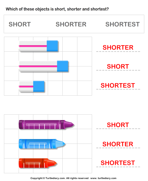 Comparing Length of Objects Answer
