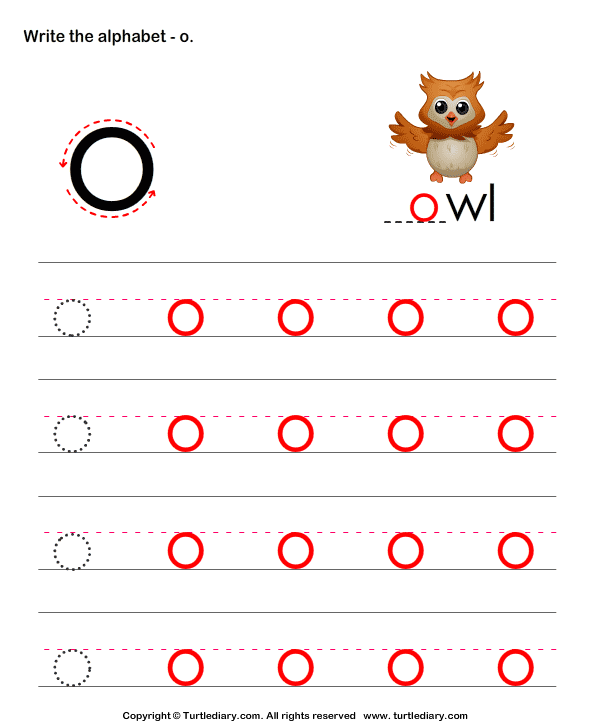Write Letters in Lower Case (A-z) Answer