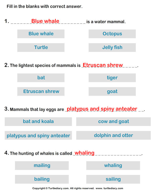Water Mammals: Write the Correct Answer Answer