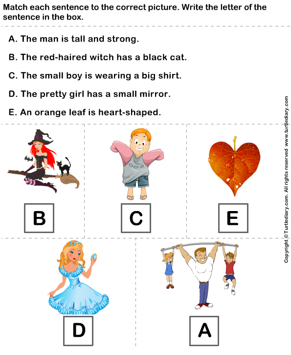 Identify Sentences to Describe Pictures Answer