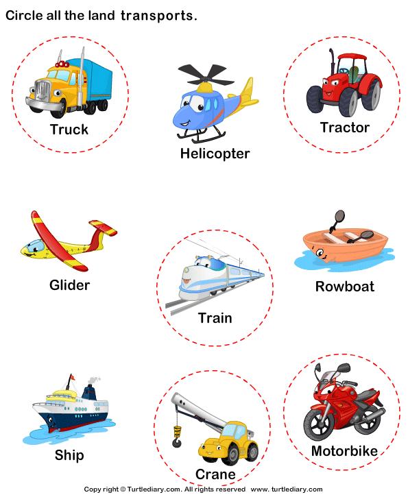 Identify Land Transports Answer