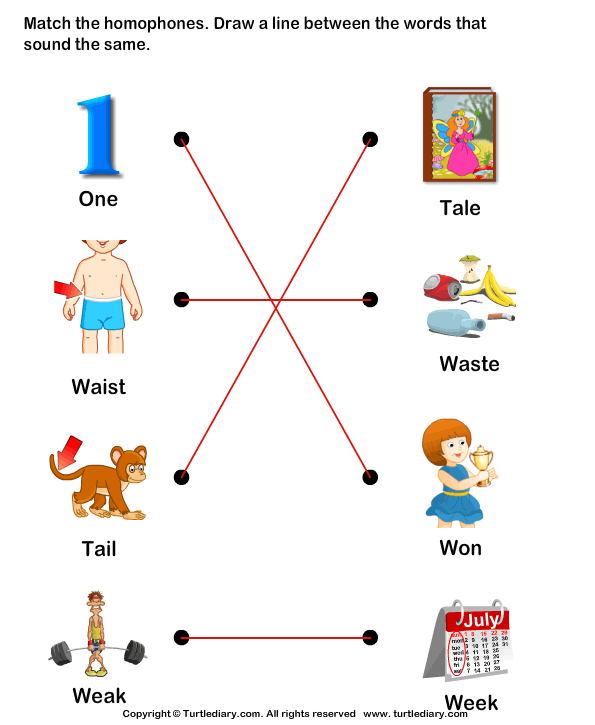 Match the Homophones Answer