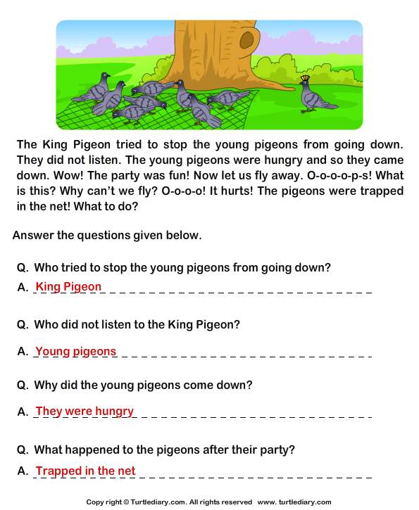Reading Comprehension Stories Answer