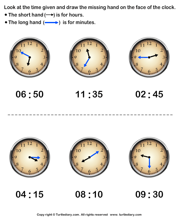 Draw Hour Hand of Clock Answer