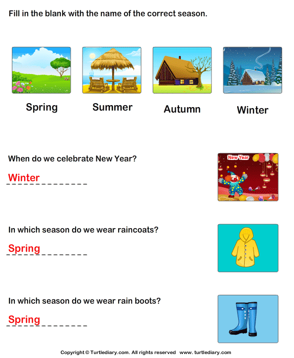 Seasons Of The Year Worksheet Turtle Diary