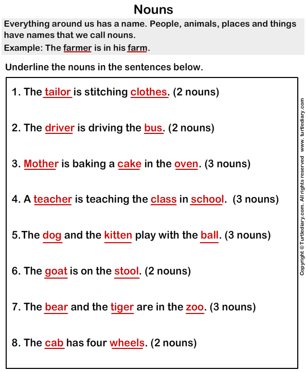 Sentences with Nouns Worksheet - Turtle Diary