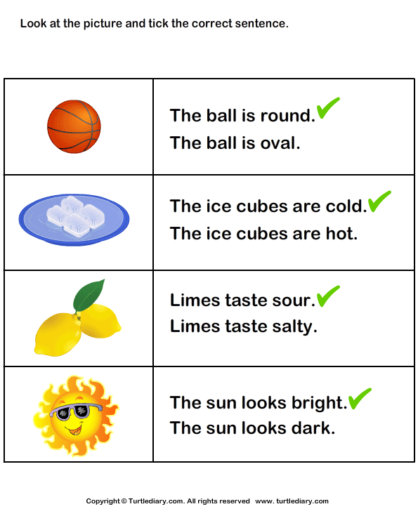 Choose the Sentence with Correct Adjective Answer