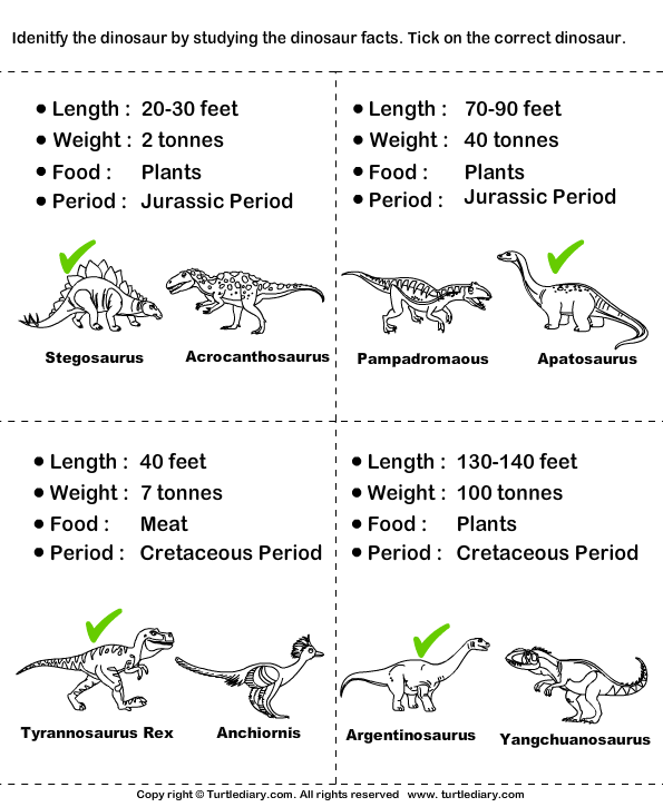 Types Of Dinosaurs With Pictures Worksheet Turtle Diary