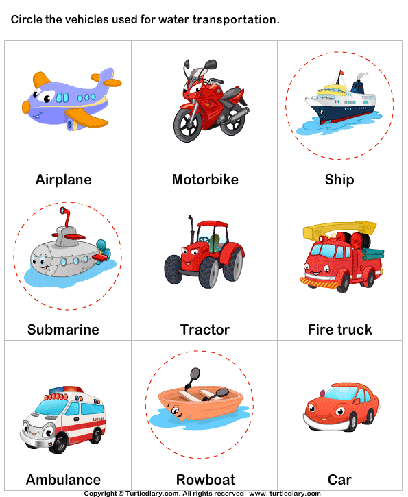 Water Transport Answer