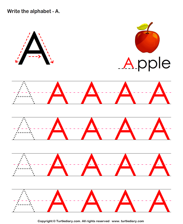 Write Letters in Upper Case (A-z) Answer