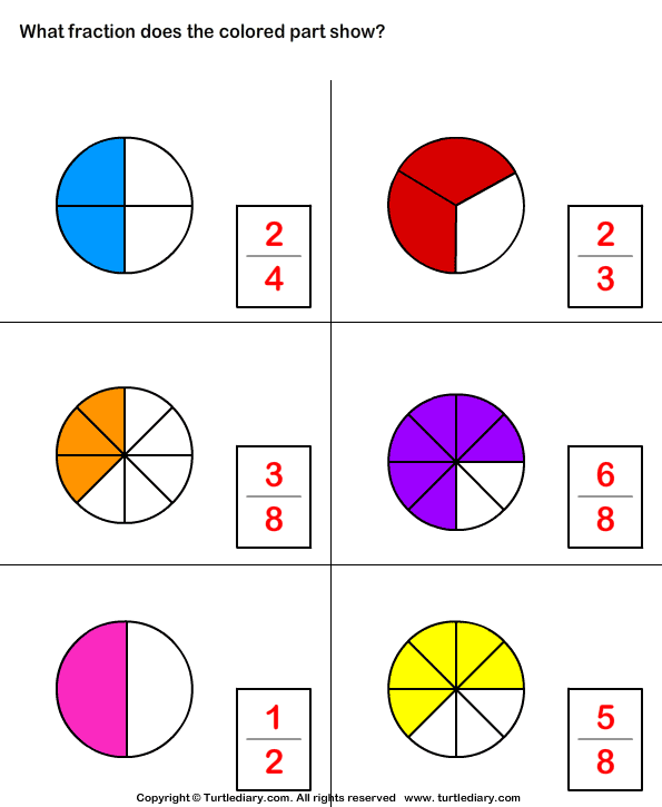 What Fraction of Shape is Colored Worksheet - Turtle Diary
