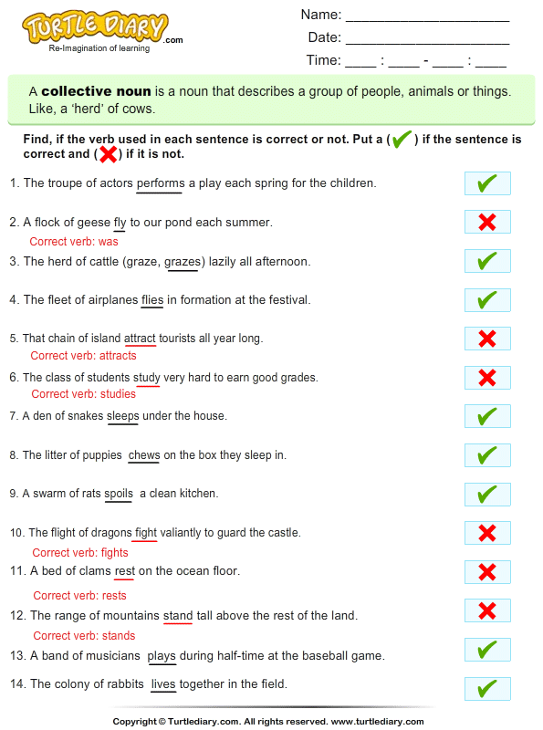 Identify the Correct and Incorrect Verbs Answer
