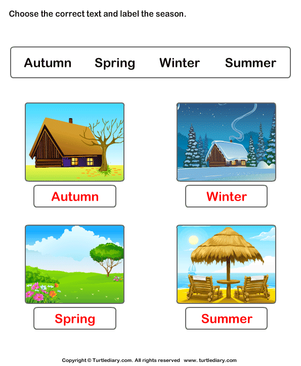 Winter Spring Summer Fall Worksheet - Turtle Diary
