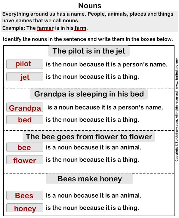 Identify Nouns Answer