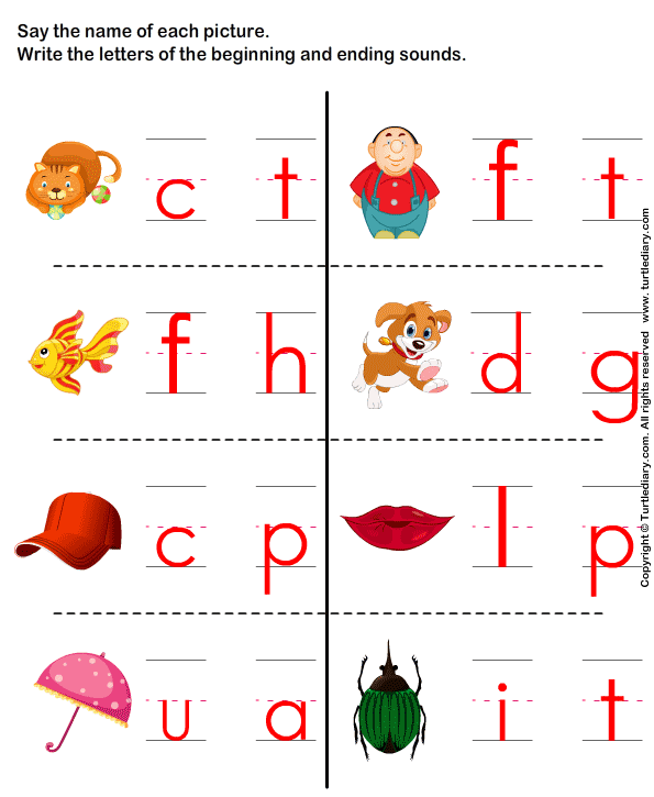 Write the Letter of Beginning and Ending Sound Worksheet Turtle – Ending Sounds Worksheets Kindergarten