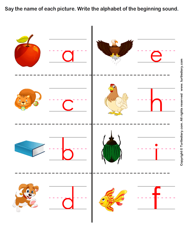 Write the Letter of Beginning Sound Answer
